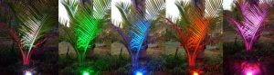 LED GARDEN LIGHT 2 JPG